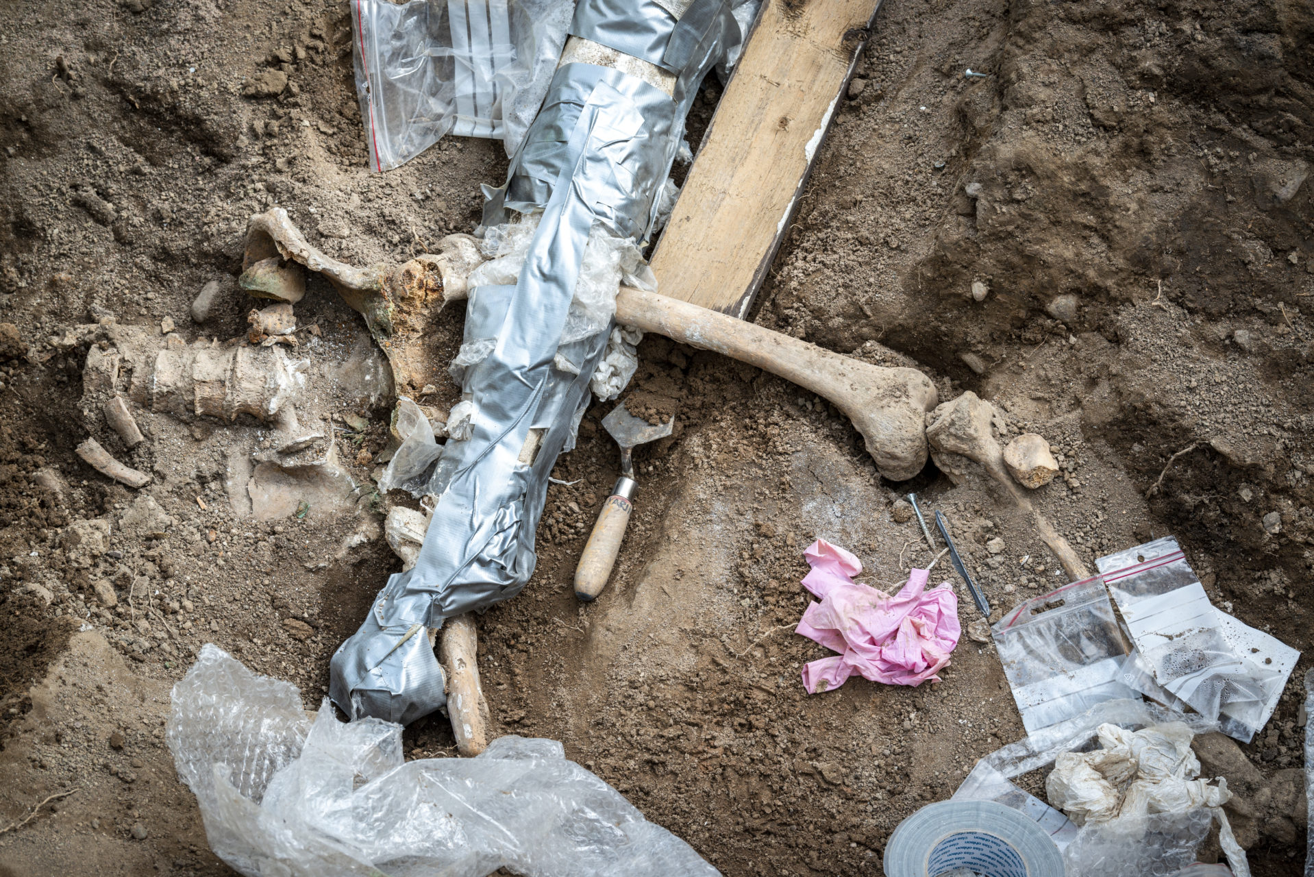 Under sommaren 2019 grävde Statens historiska museer (Arkeologerna) ut två bårgravar vid prästgården i Gamla Uppsala. Foto: Johan Lindstén