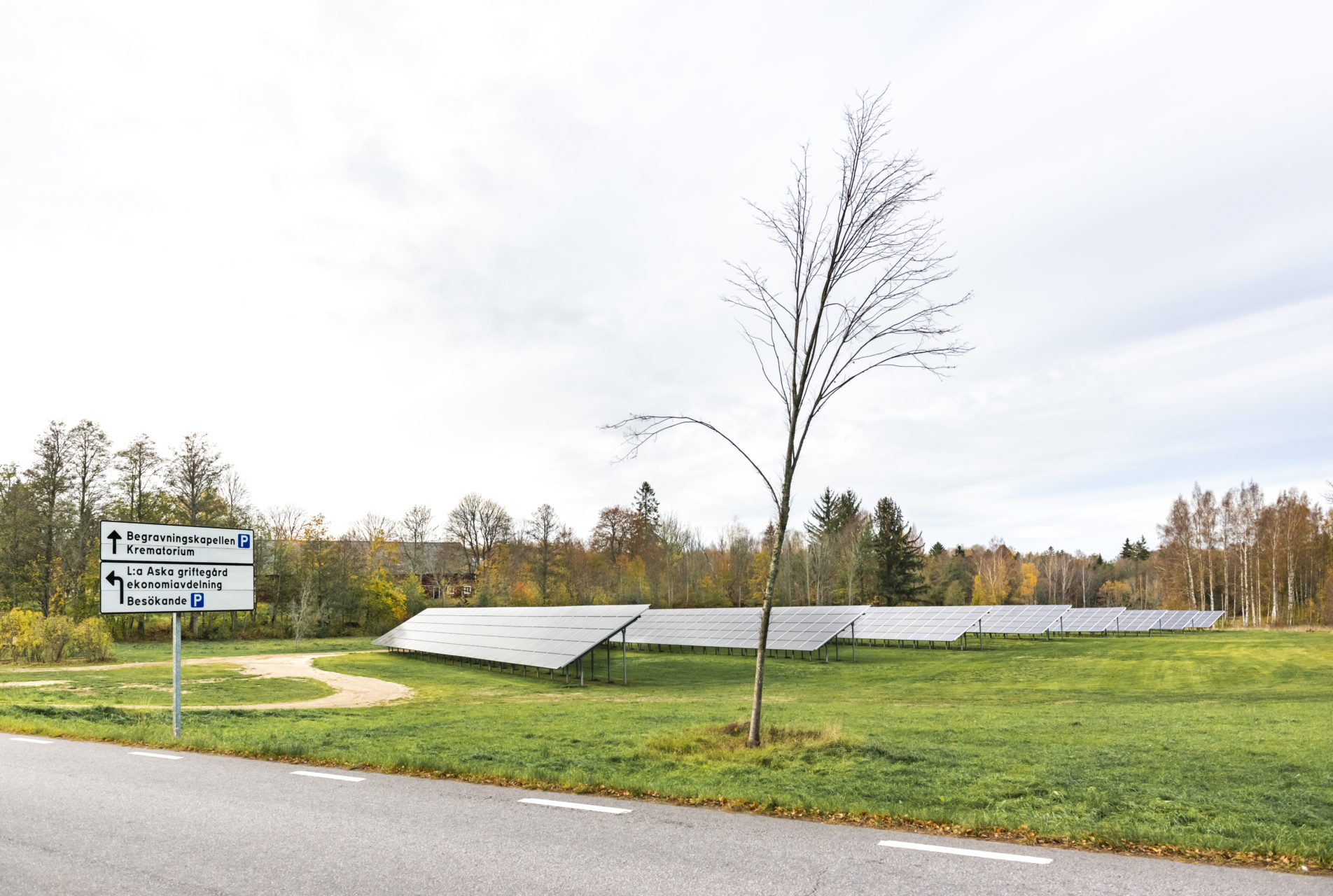 Solelsanläggningen vid Lilla Aska strax söder om Linköping. Publicerat i Kyrkogården #4–2019. Foto: Johan Lindstén